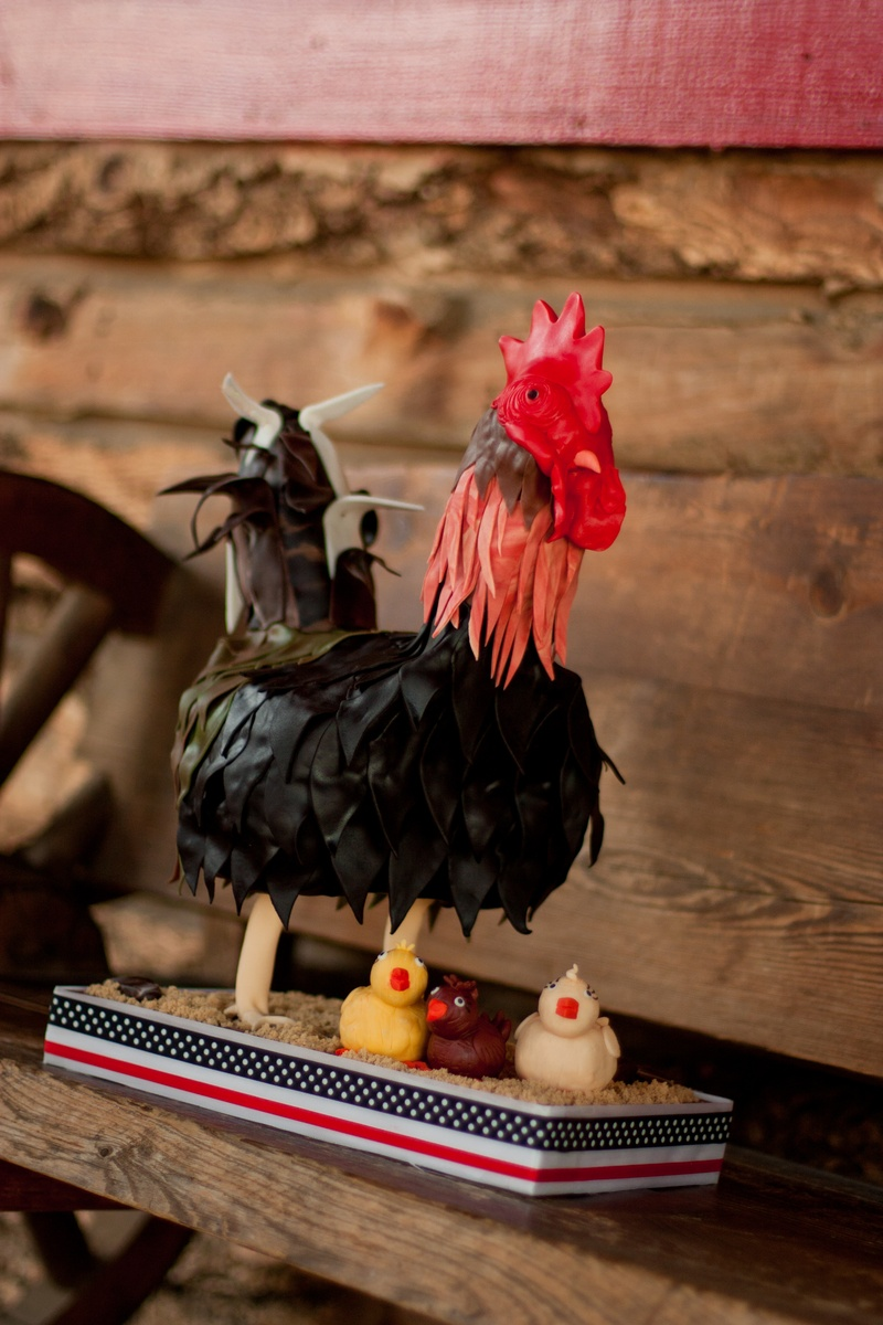 A Rooster and his Chicks