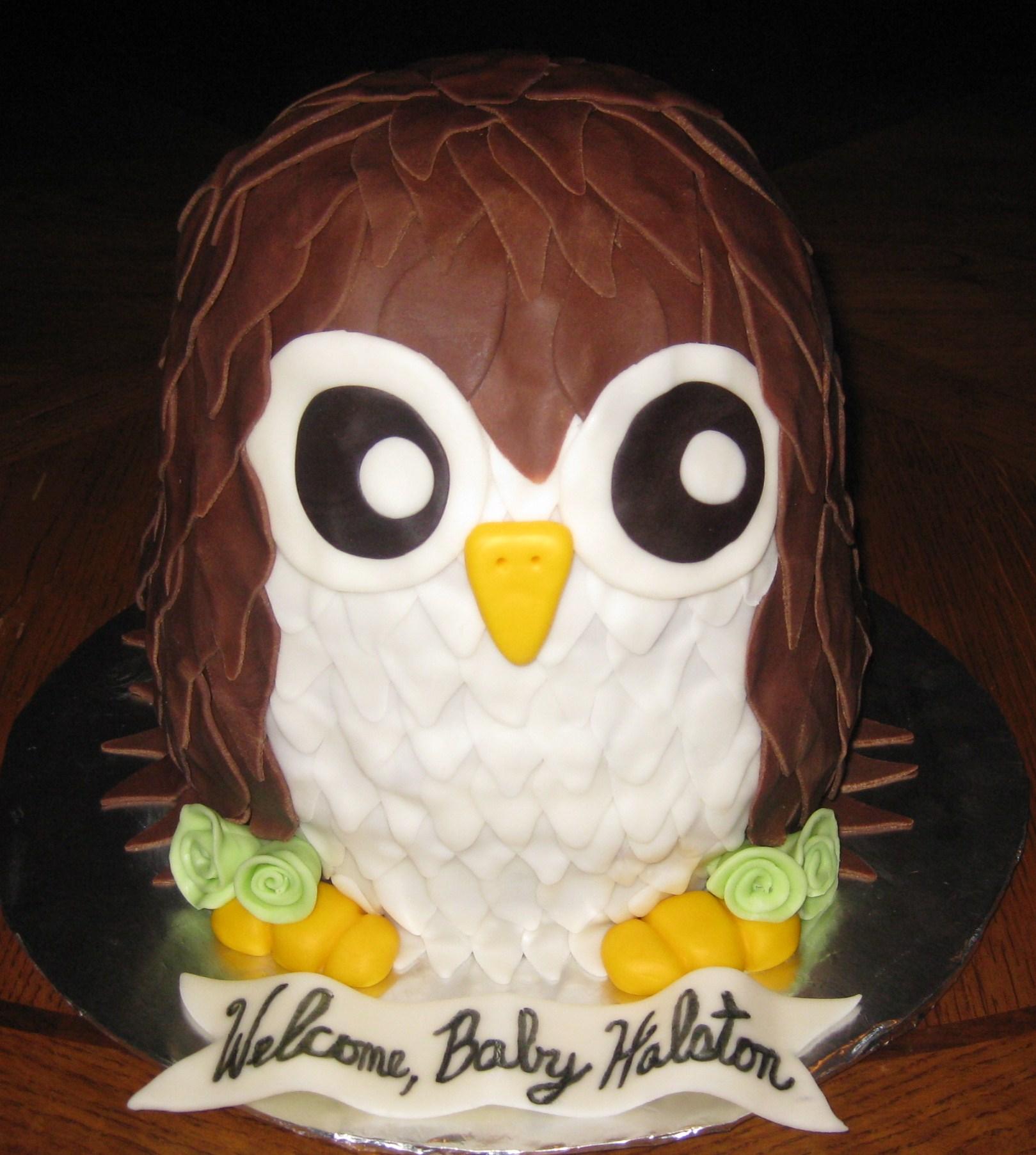 Owl - Baby Boy