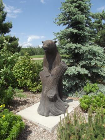 Meadow Lake - Black Bear