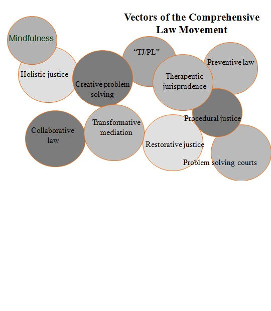 Venn Diagram of the Comprehensive Law Vectors