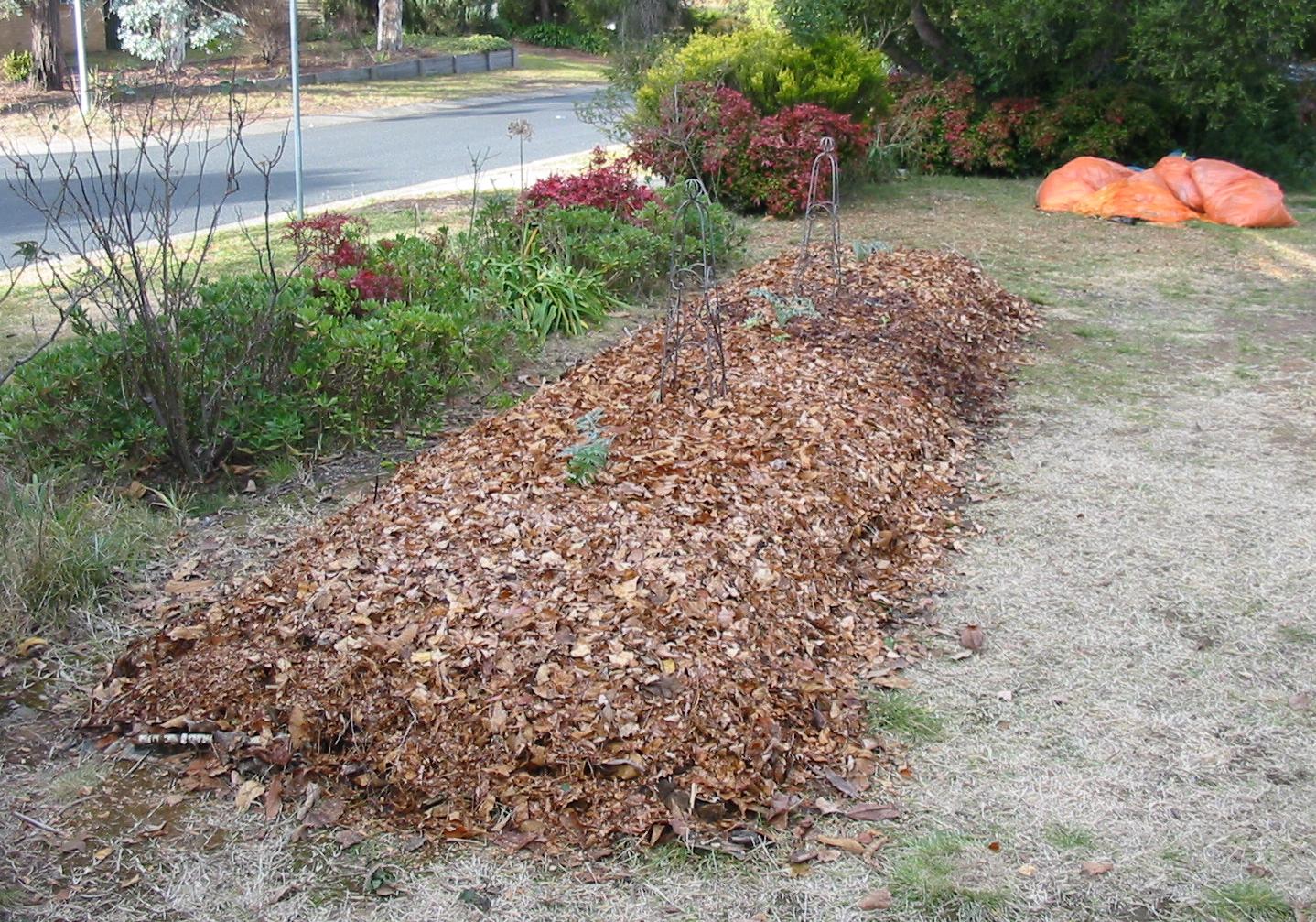 Garden #2 - mulching