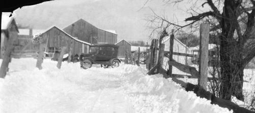 The Lynn Farm