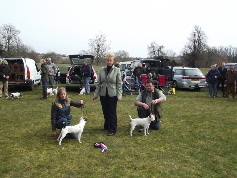 Champion Puppy and Reserve