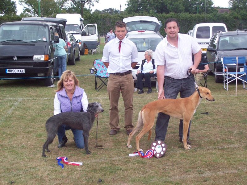 Best Lurcher in Show and Reserve