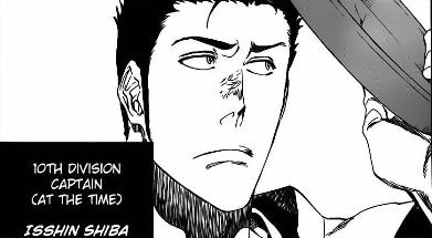 Captain Isshin Shiba in Bleach manga 529