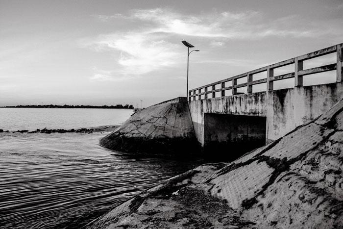 Dai Nippon Bridge