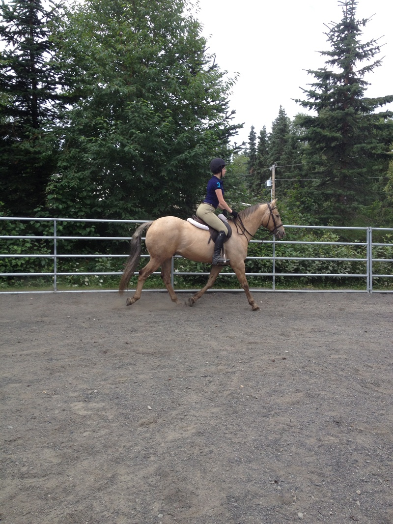 One of M.E.C' S novice riders during a lesson.