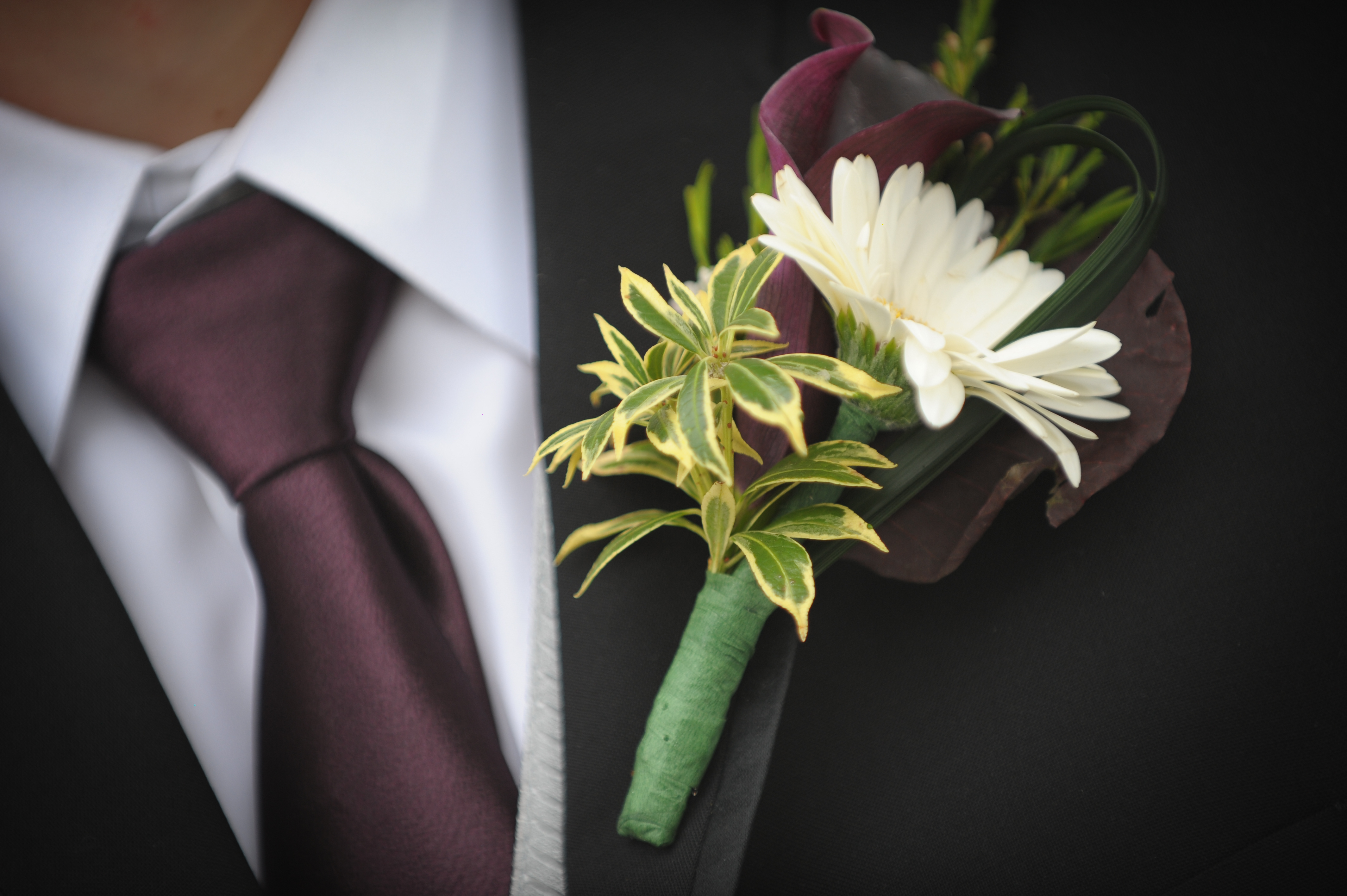Boutonniere With Cream Gerbera And Dark Purple Calla Lilies Flowers In Motion