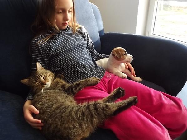 Fibis Tekantis Upelis, Austeja ir katinas