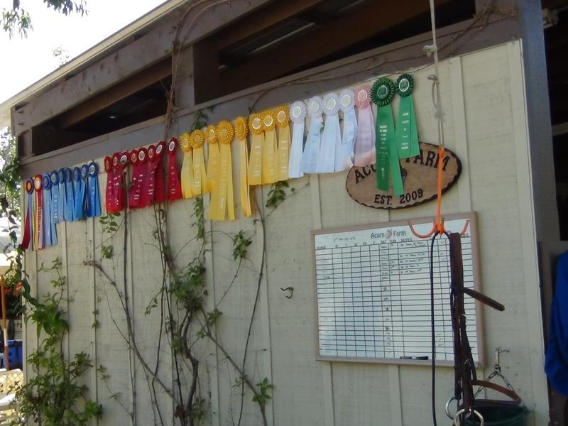 Ribbons at the Barn