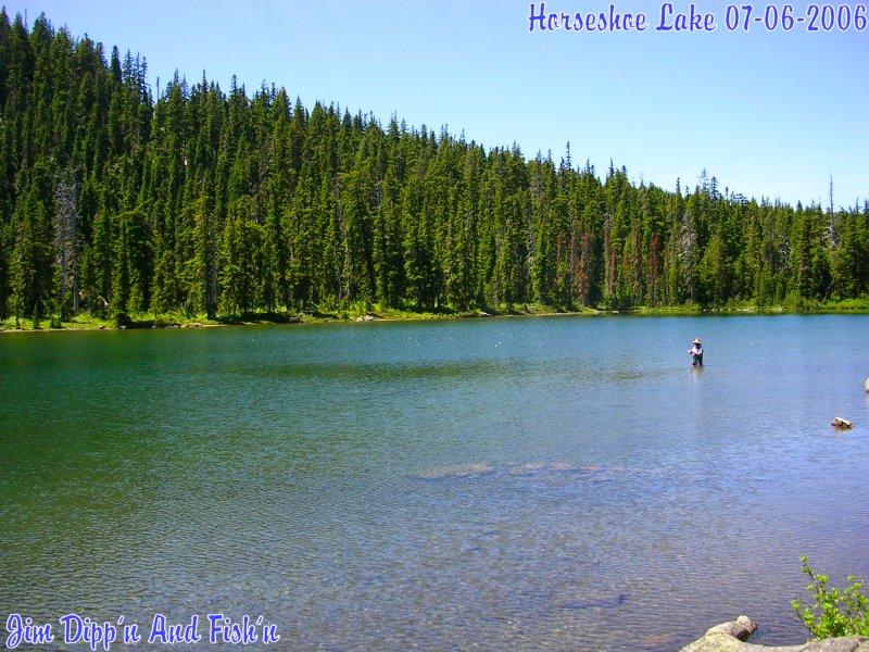 Swimming At Horseshoe Lake