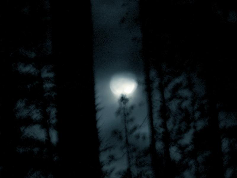 Olallie Full Moon