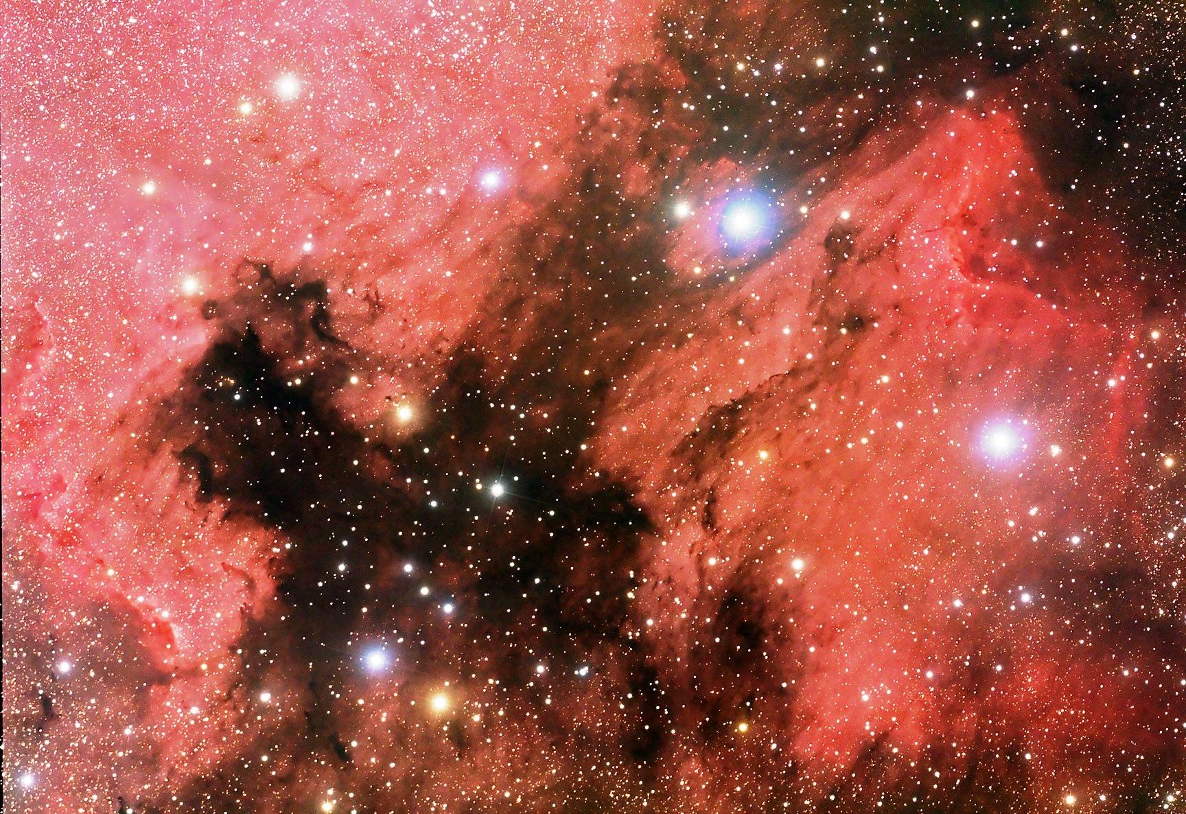 North American and Pelican Nebulae