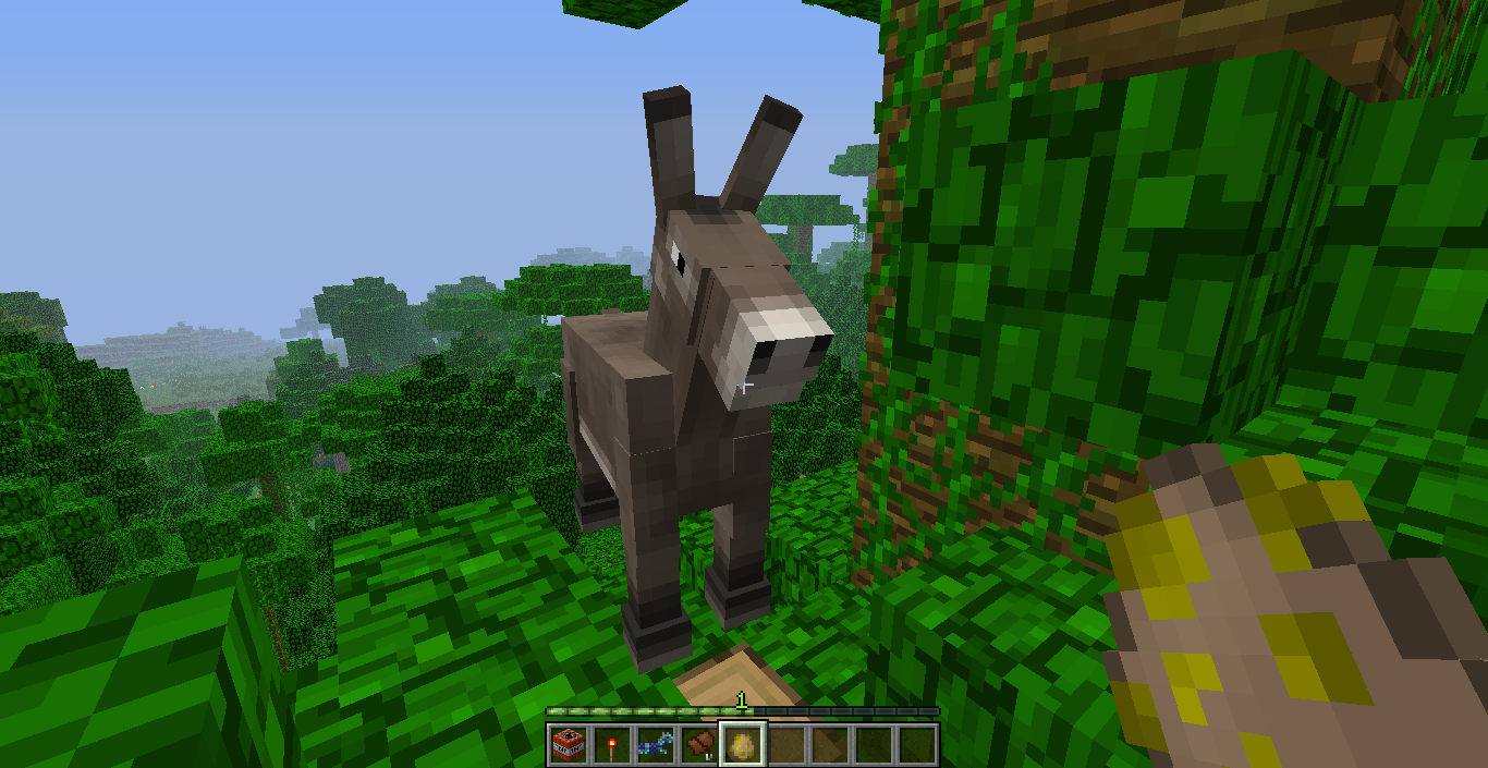 First appearance of le Donkey