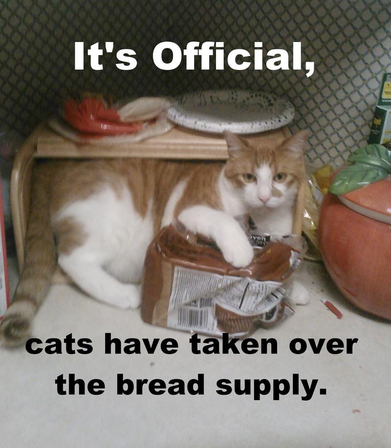Dat bread