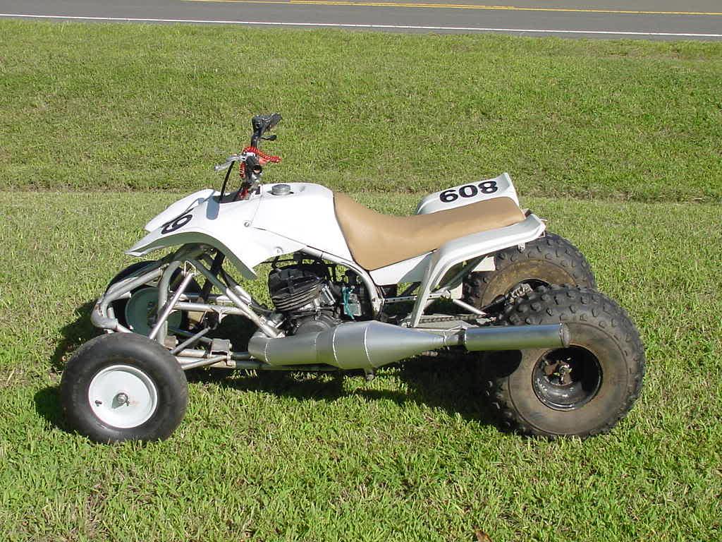 Yamaha Drag Blaster