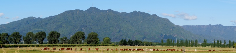 Panoramic view of Te Aroha  Mountain