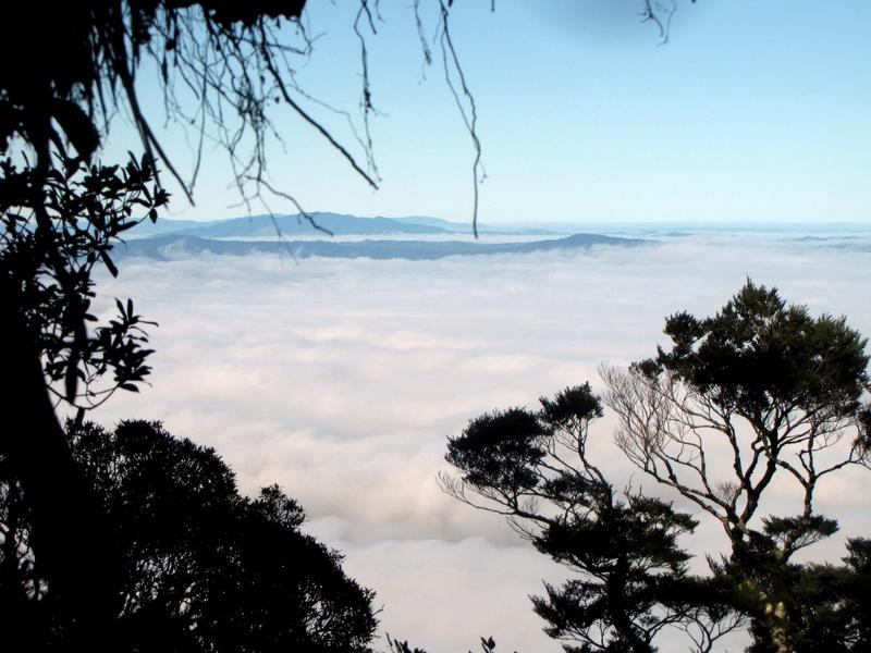 View From Top of Te Aroha  Mountain