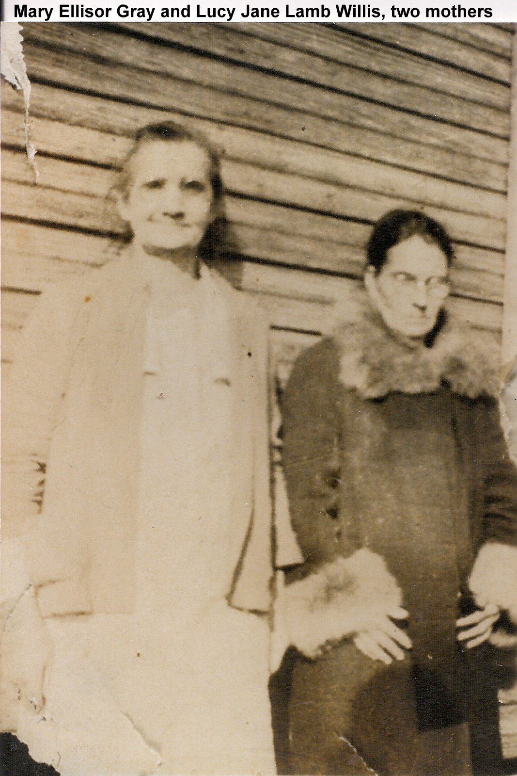 Alice Lucinda Willis Gray's Mother-in-law & Mother
