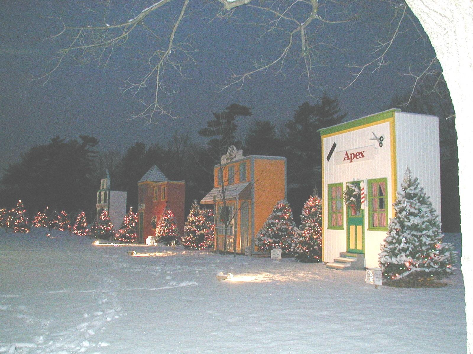 Village Snowy Night