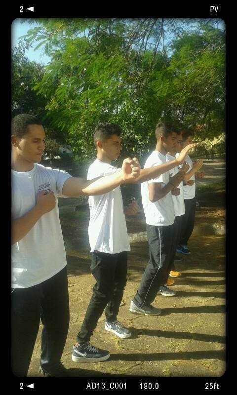 WING CHUN FAMILY ROTHER - BRAZIL