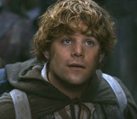 Sam Gewissies - Lord of the Rings