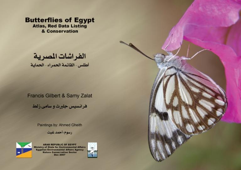 Butterflies of Egypt book