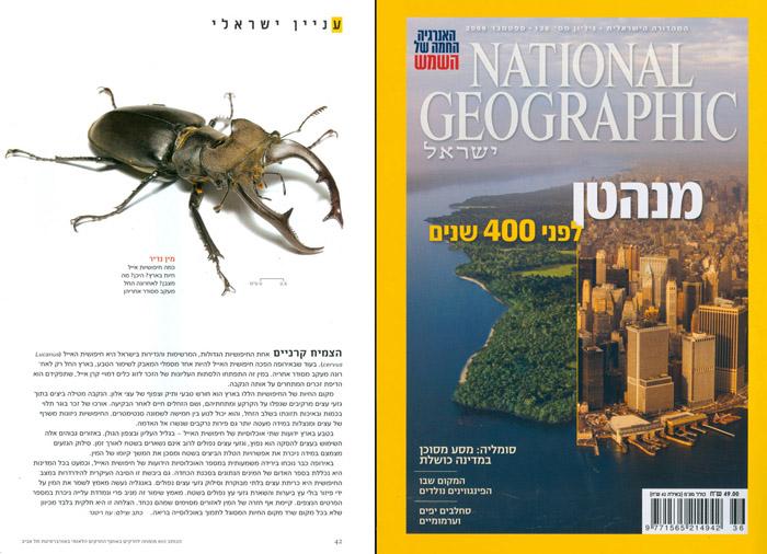 National Geographic - Lucanus cervus article