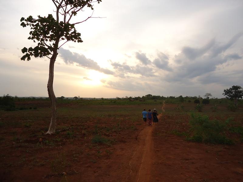 Evening Walks