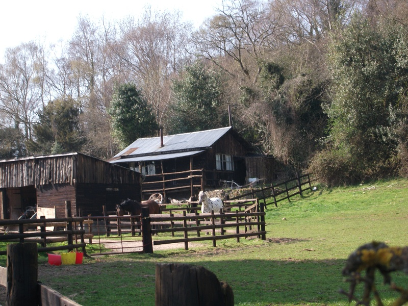 The Old Log Cabin