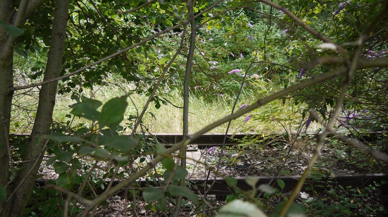 The old line just before potters lane