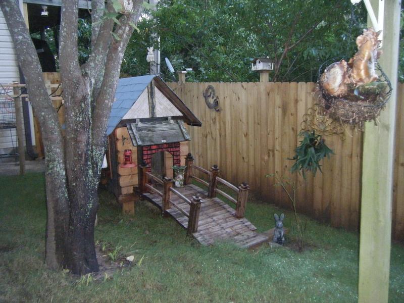backyard habitat giant chinchilla rabbit association