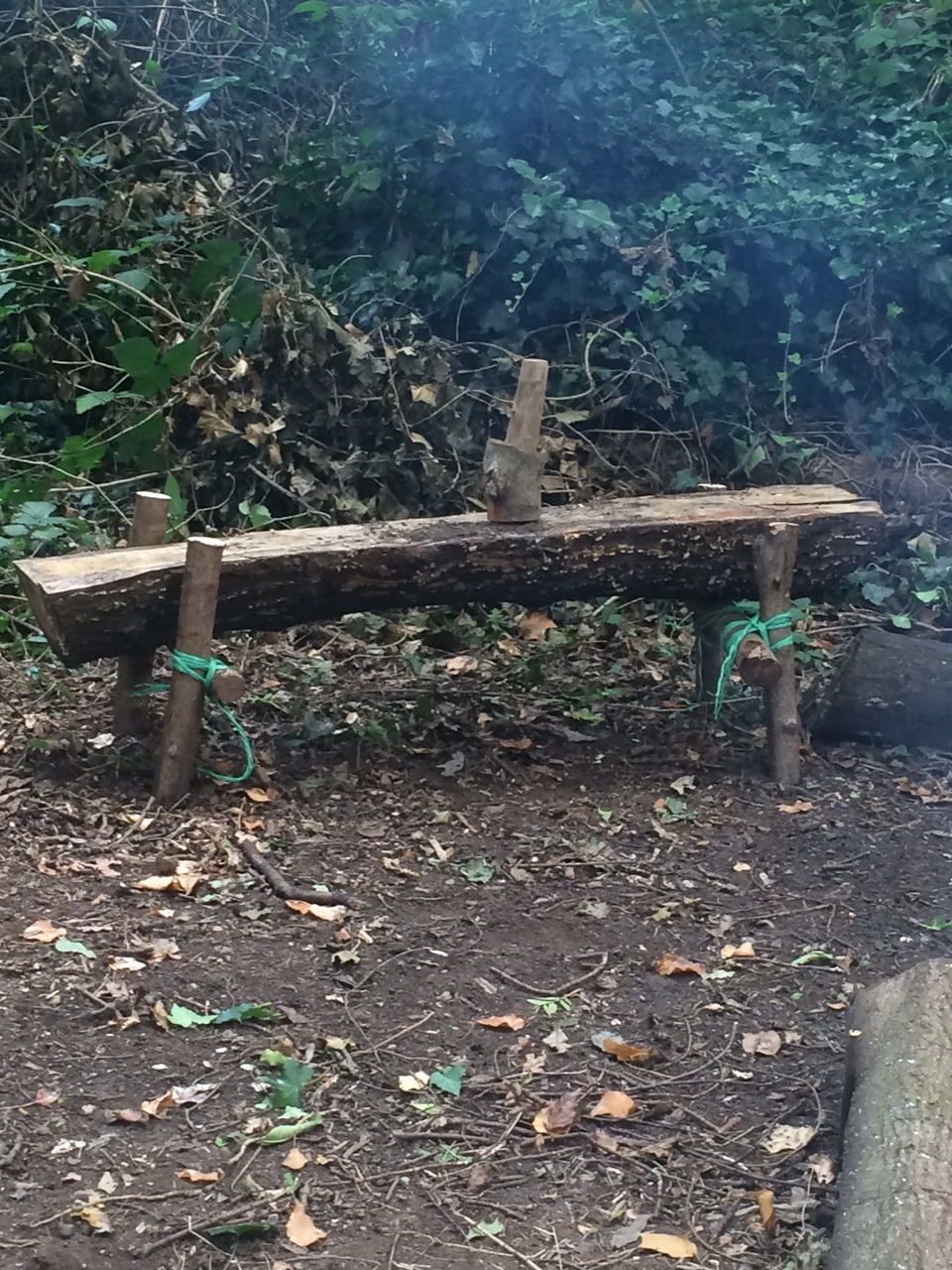 New bench for the fire circle