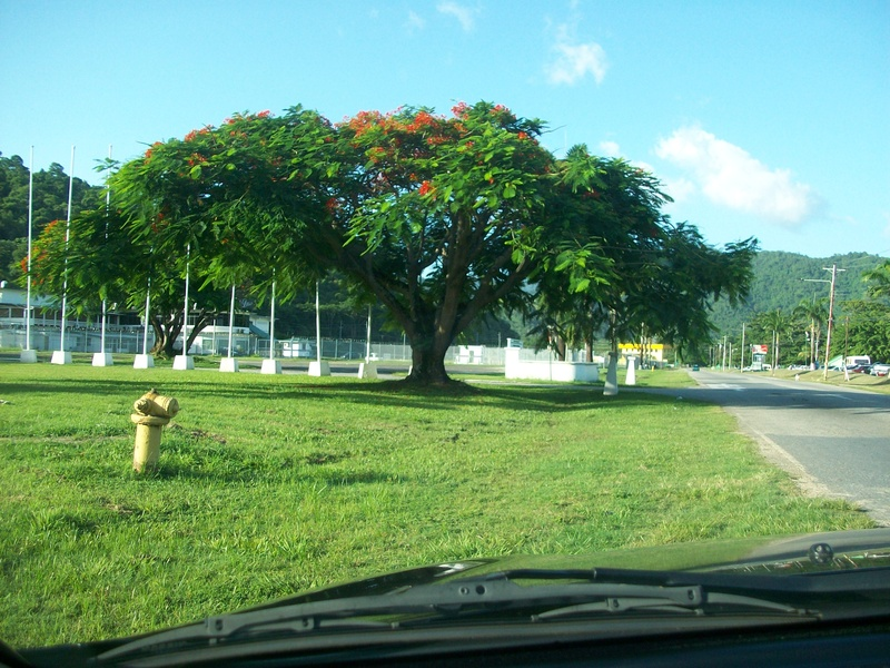 View of  leaving Chaguaramas