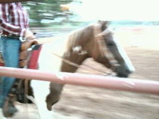 McCally Creek Cowgirl