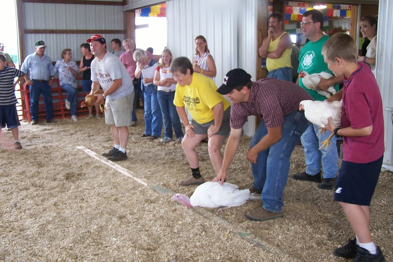 Chicken races at the Beltrami County Fair