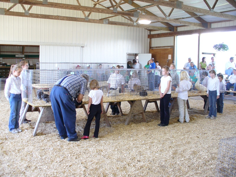 More Poultry show