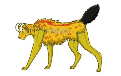 Cheetah Body Type