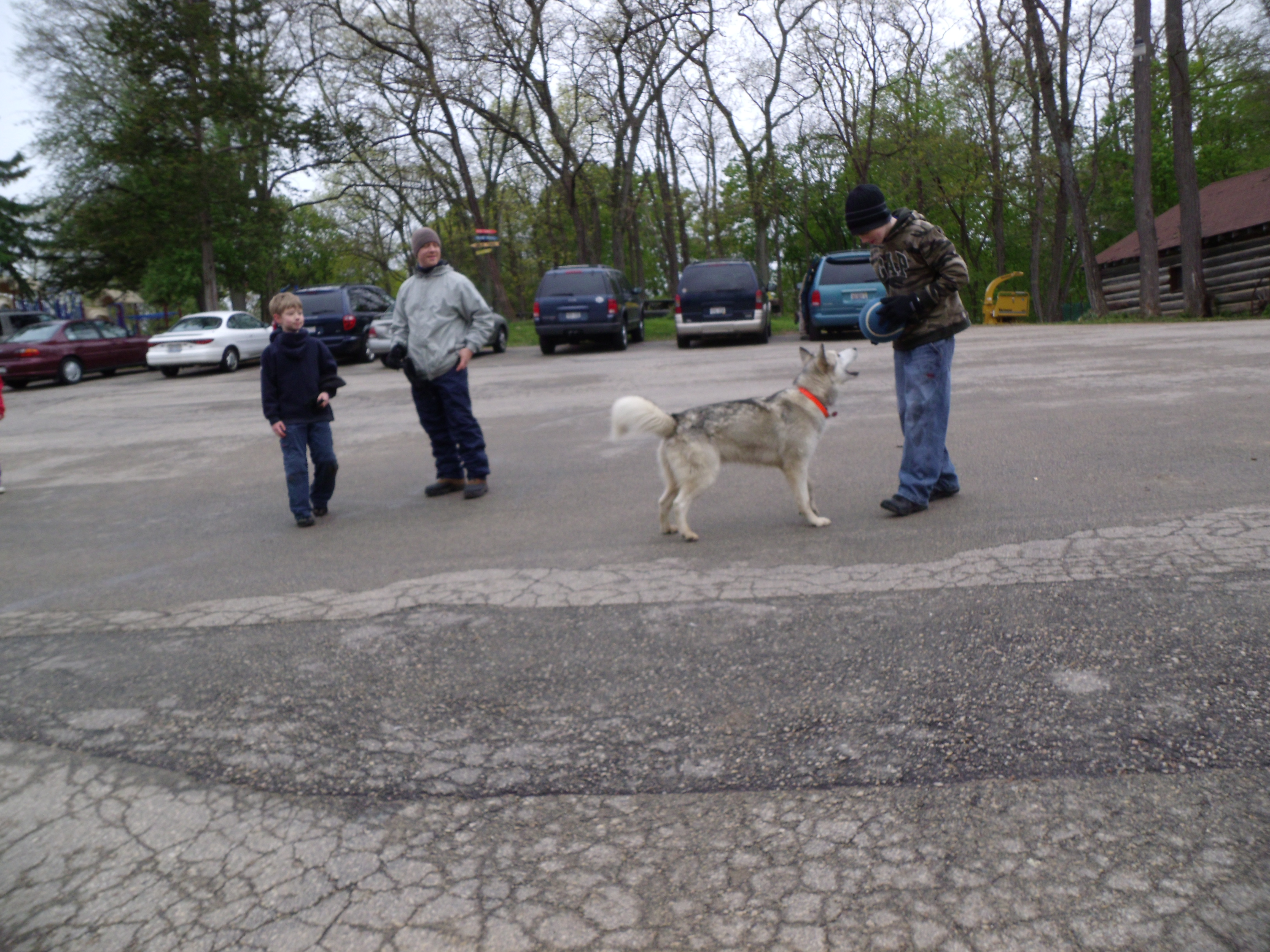 the dog Timber