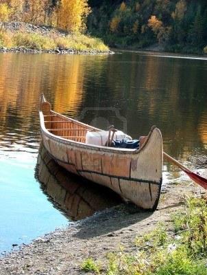 Soothing & Relaxing Wellness Coaching