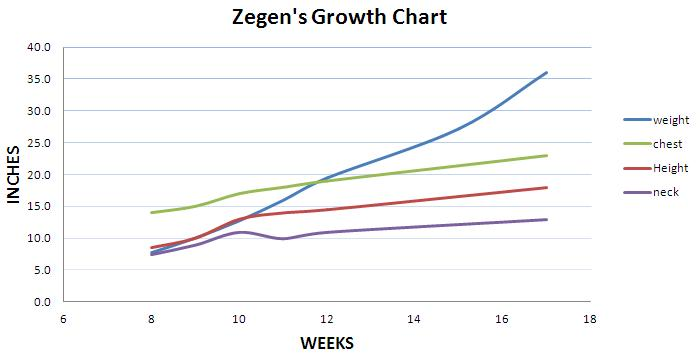 4 month growth chart