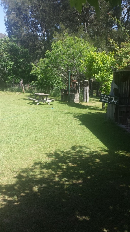 Lawn areas for kids and pets to run around on.