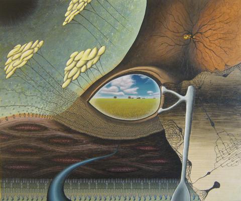 Inward Perception of Outward Illusions