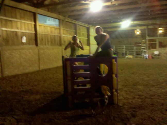 Goats playpen! Cara and Courtney