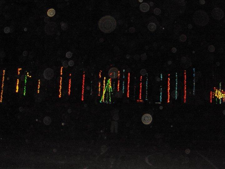 NDB Light a Tree