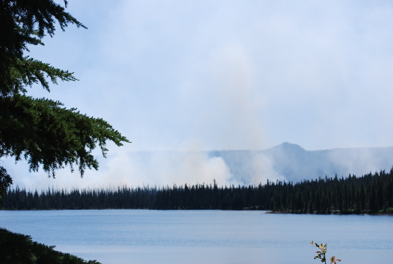 Olallie fire