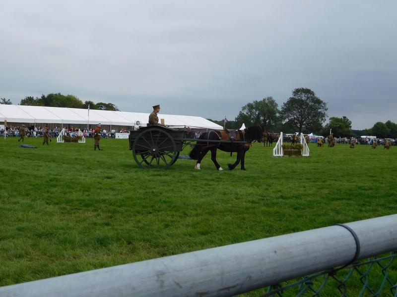 Horses at war display Edenbridge