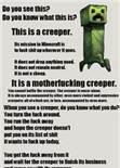 Creeper stats