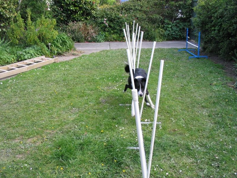 Weave training