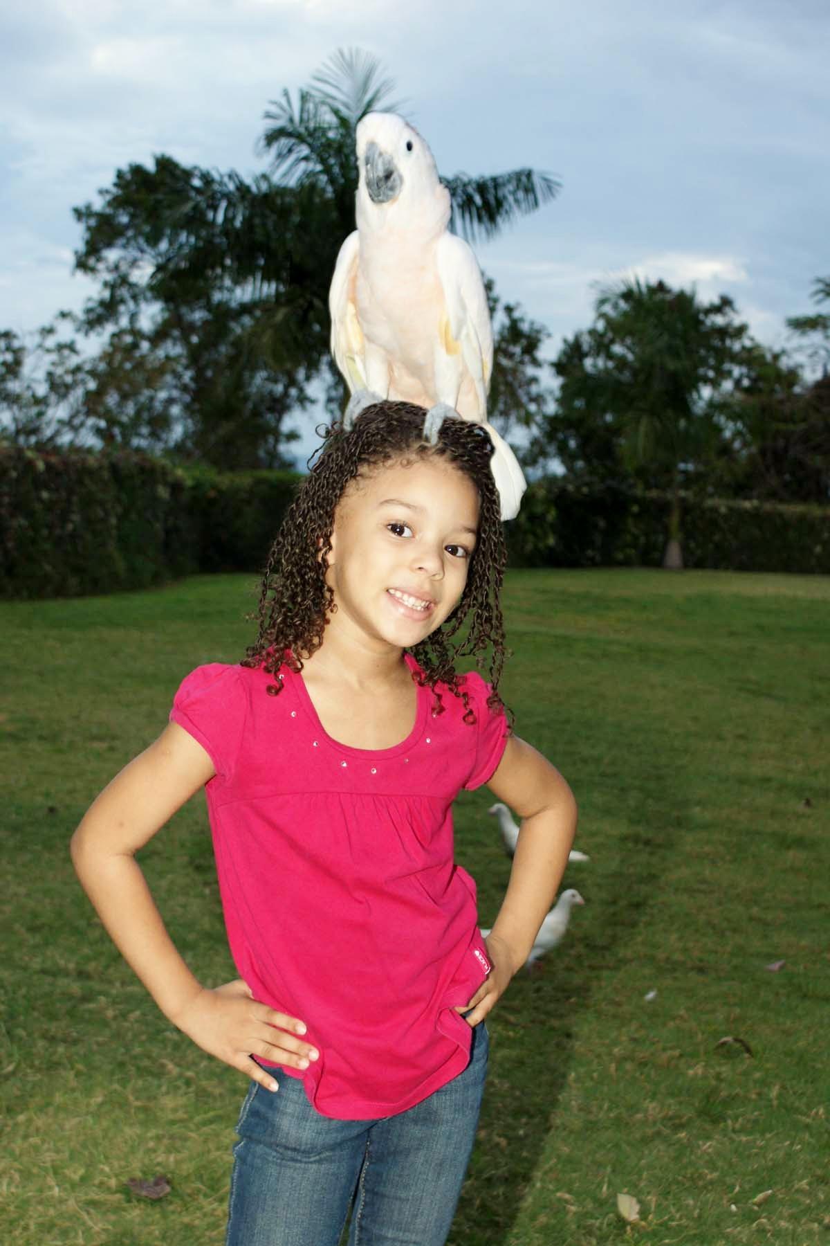 Penny, The Umbrella Cockatoo